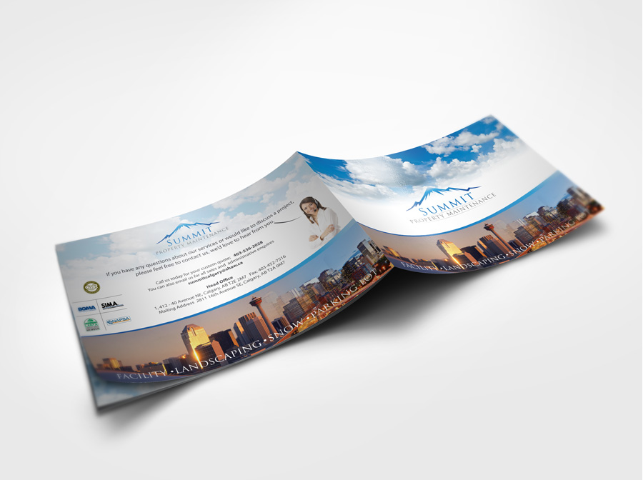 Brochure design for calgary company digital lion for Brochure for web design company