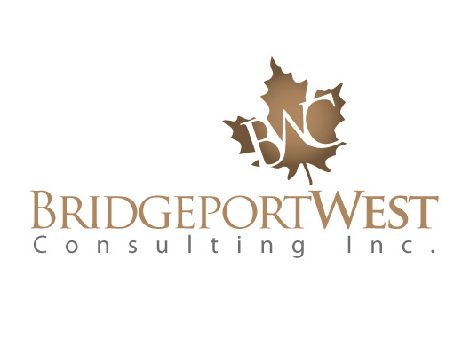 Logo design for canadian consulting company digital lion for Consulting company logo