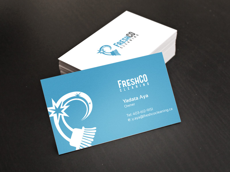 Commercial Cleaning Company Logo and Card Design - Digital Lion