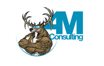 Custom Logo/Mascot Design for Consulting Company