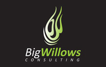 Logo Design for Consulting Company