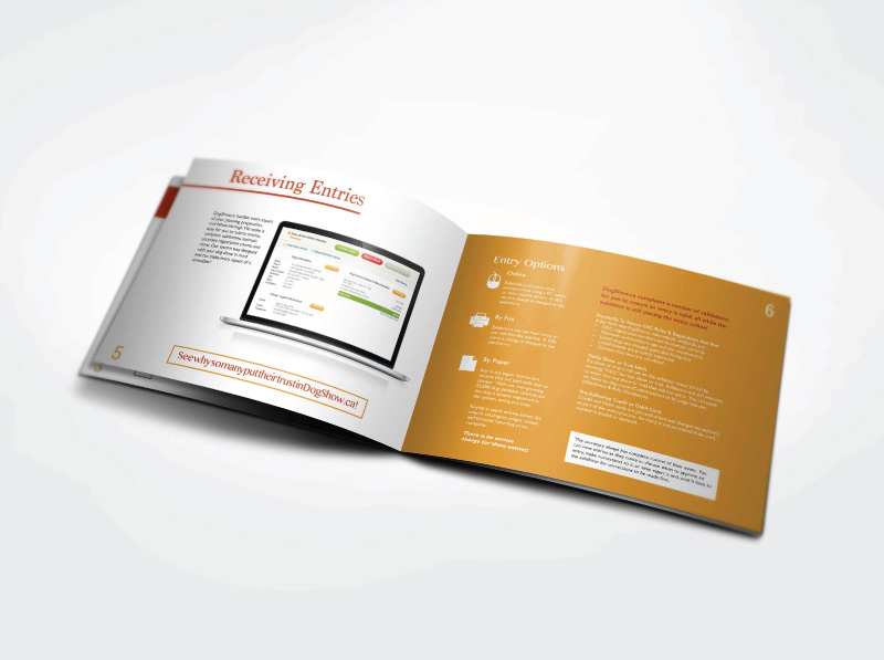 Event Software Brochure Booklet Design  Digital Lion