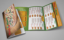 Mail-out Menu Design for Pizza Restaurant